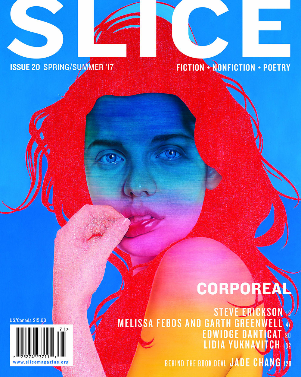 slice_issue20.jpg