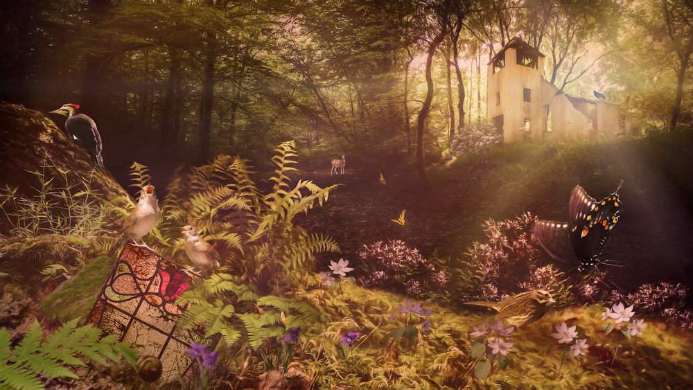 The Wren Sings a Hymn in the Forest - Archival Pigment Print on Hahnemühle Fine Art Rag18