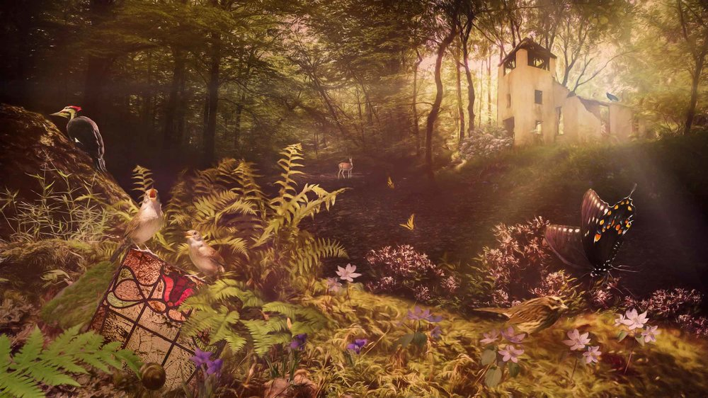 """'The Wren Sings a Hymn in the Forest', 2017 Photo Composition - Archival Pigment Print 18"""" x 32"""""""