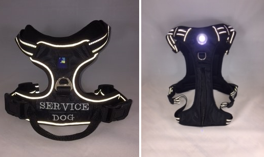 Headlight Harness for Service Dogs