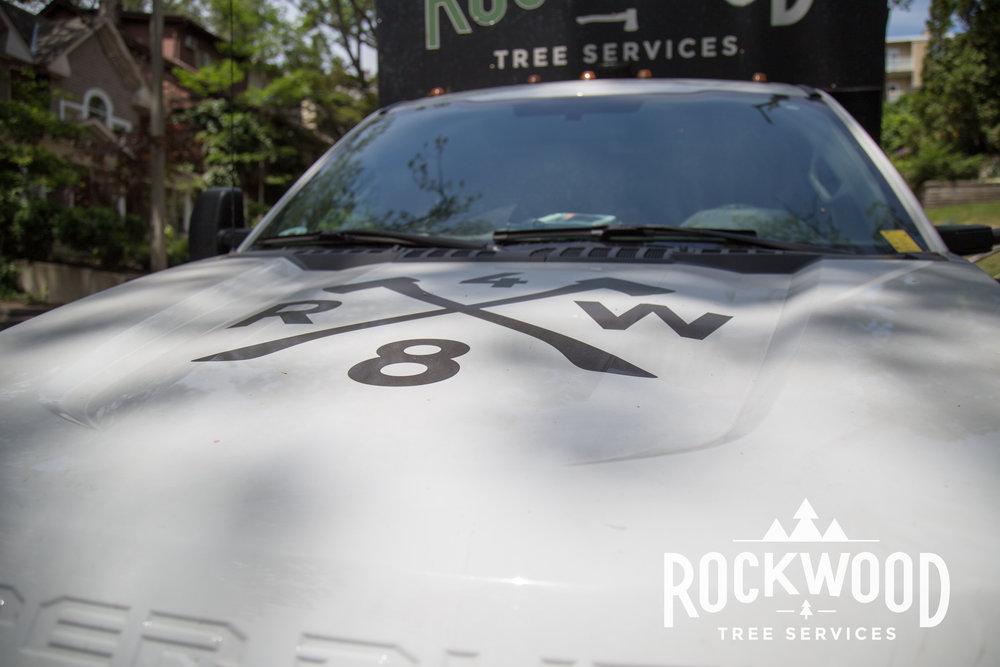 Rockwood Tree Services (3 of 351).jpg