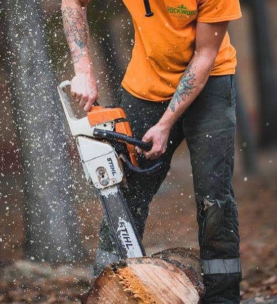 Let Rockwood Tree Services take the stress out of your property cleaning and help you have a TREEmendous Spring this year! 🥽  https://youtu.be/uoNkr_HIYiA  #WinterTreeCleanUp #SpringTreeCleanUp #SpringTreePreparation #SpringTreeMaintenance #SpringTreeRepair #WinterTreeRepair #TorontoPropertyMaintenance #TorontoYardMaintenance #TorontoYardRepair #TorontoTreeMaintenance  #TorontoArborists #Arborist #Arborists #ArboristReport #TorontoTreeHealth #TorontoTreeRemoval #TorontoTreeRepair #TorontoTreeSafety #TorontoStumpRemoval #TorontoEmergencyTreeRepair #TorontoEmergencyTreeRemoval #RockwoodTreeServices #TreeServices #TorontoTrees #TorontoTreeServices #ScarboroughTrees #ScarboroughTreeServices