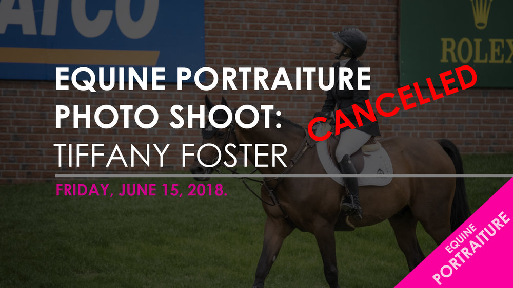 Blog Template - EQUINE PORTRAITURE - FOSTER.jpg