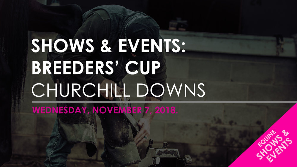 Blog Template - SHOWS & EVENTS - BREEDERS CUP.jpg
