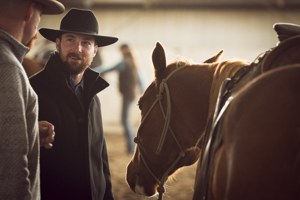 Equine Shows & Events -