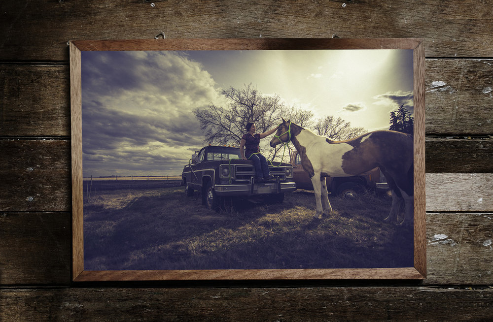 New Equine Wall Art Service! - Click HERE for more info.