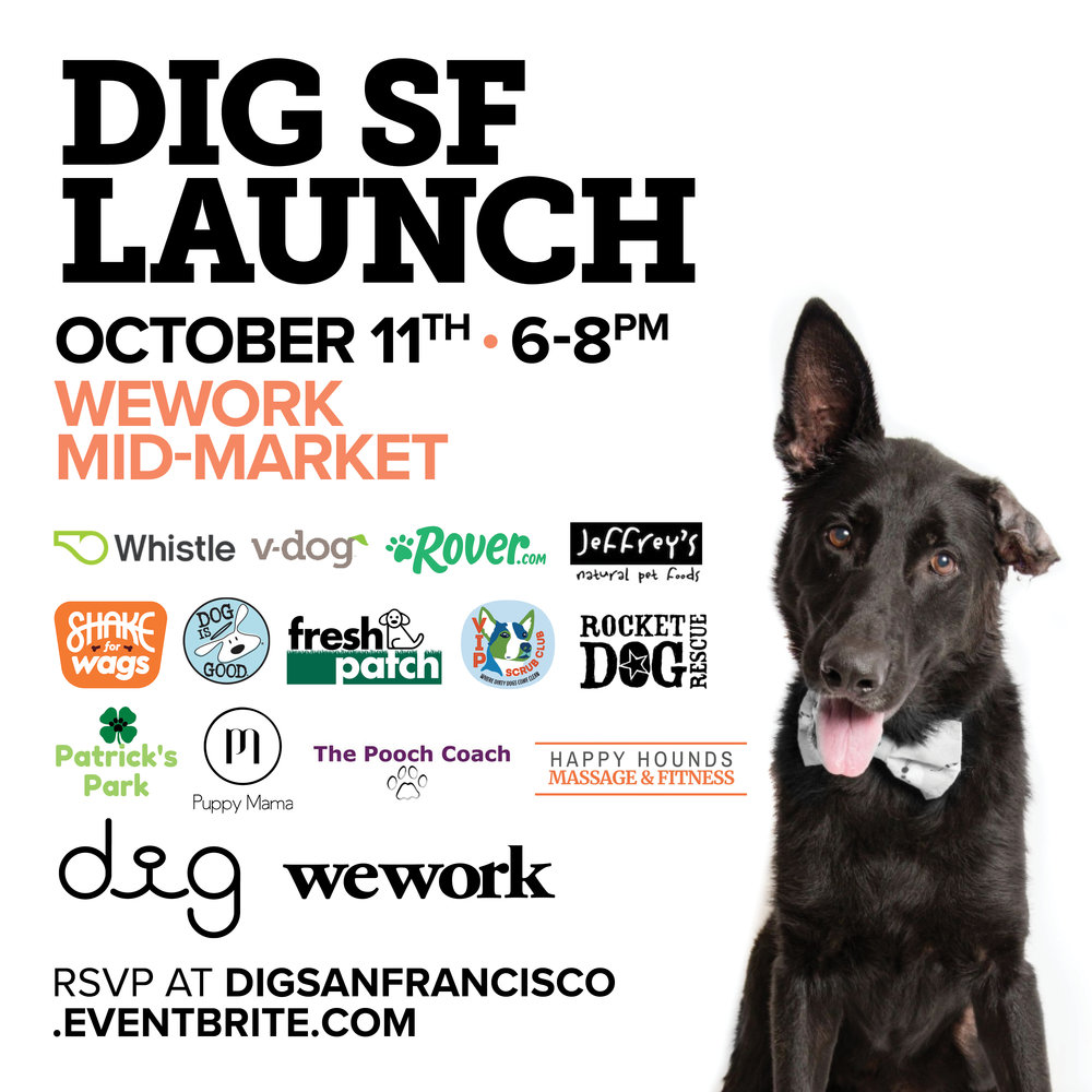 Dig San Francisco Launch -