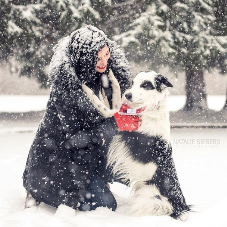 6 Holiday Date Ideas for Dog Lovers - Here are 6 date ideas that will ensure this cuffing season is Fido friendly. Read More