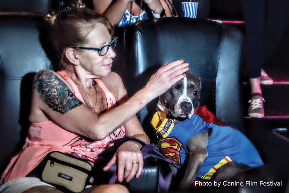 The Canine Film Festival - Arguably, the most exciting dog-themed event in Miami is the annual Canine Film Festival.