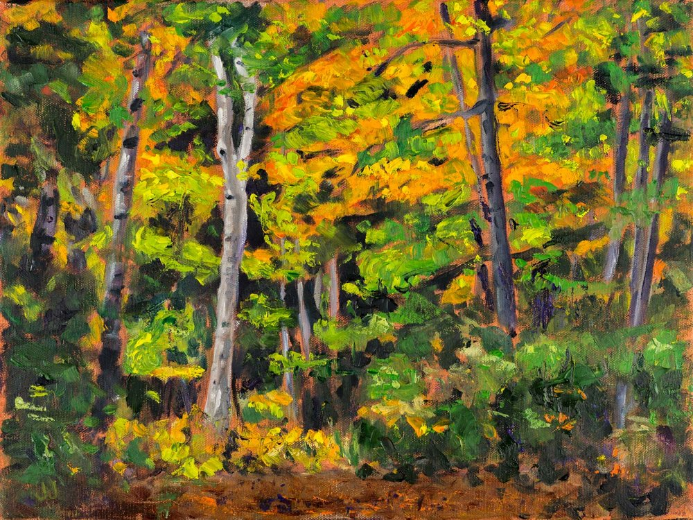 Autumn Glow  12x16 inches, oil on canvas (sides ~0.75 inches deep, painted a loose extension of the scene)  $320 CAD