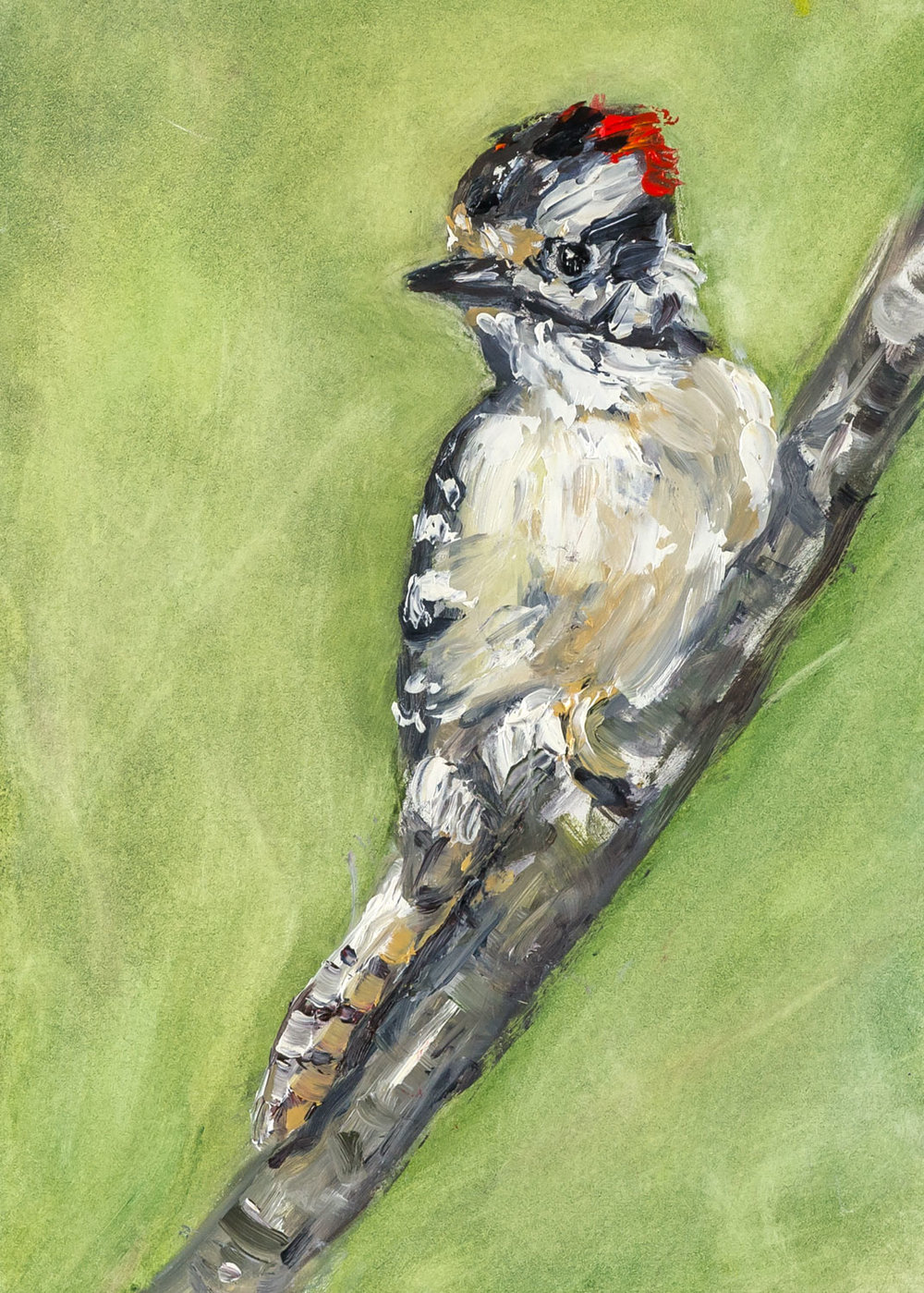 Downy Woodpecker  5x7 inches, oil on panel  Sold