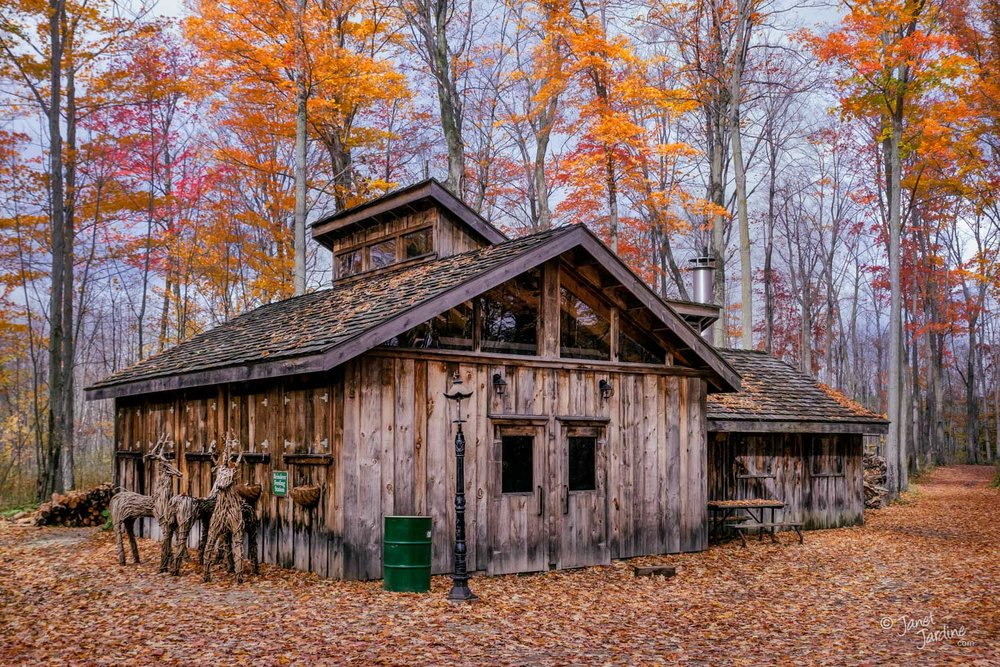 Autum-at-the-Sugar-Shack_Photo_copyright_Janet_Jardine.jpg
