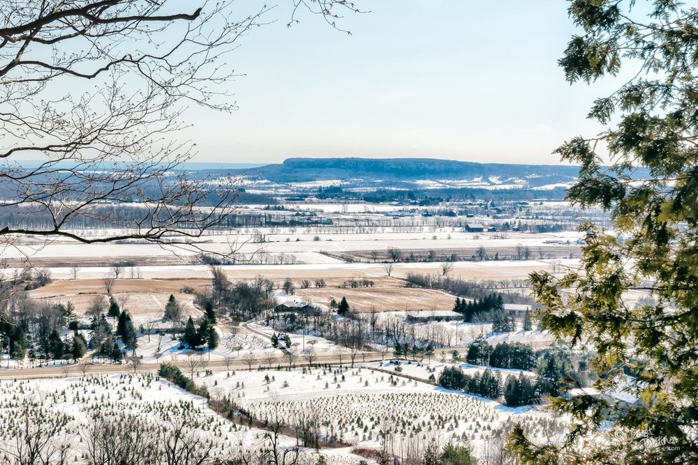 Mount-Nemo-View-from-Rattlesnake-Point_Photo_copyright_Janet_Jardine.jpg