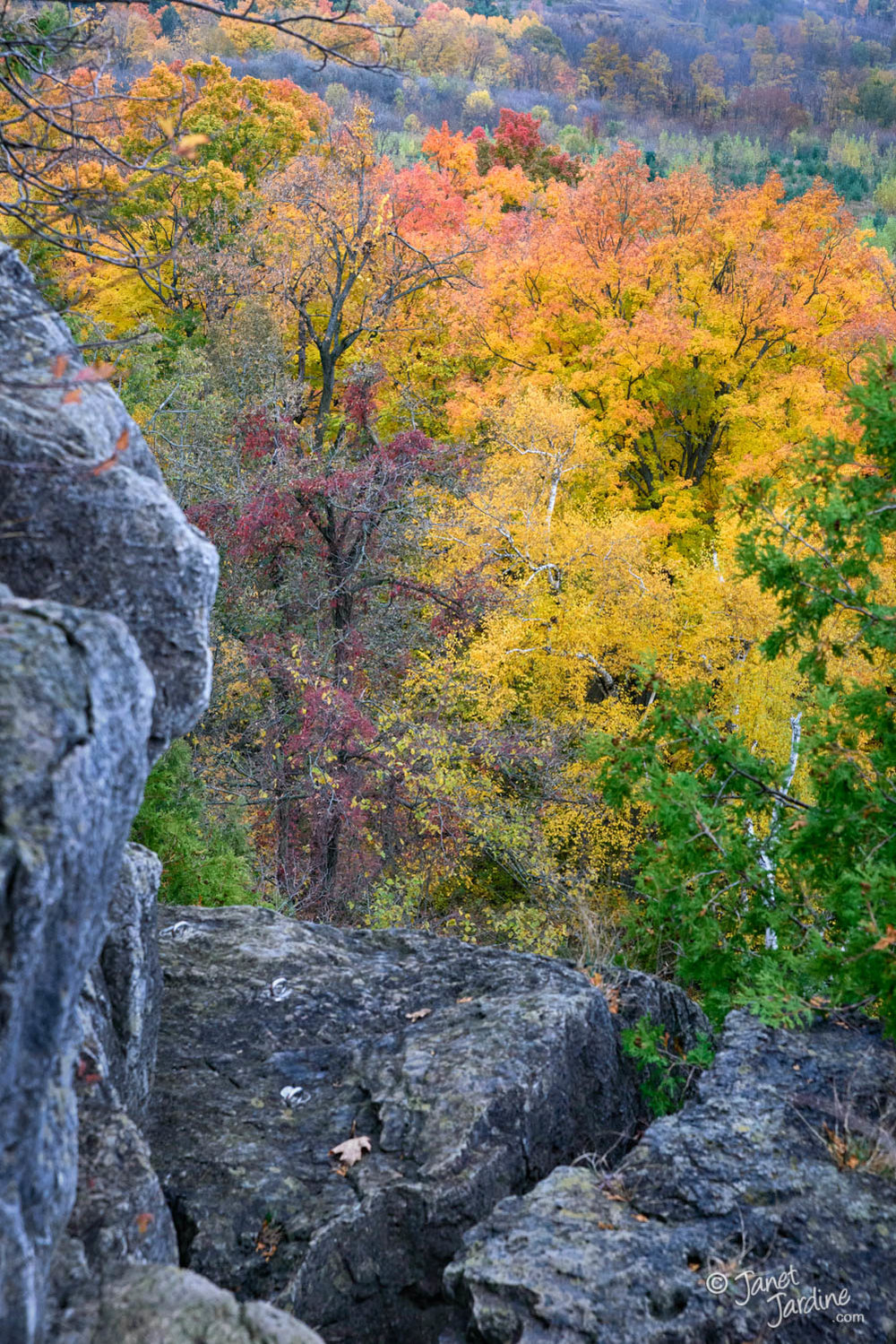 Autumn-view-from-Niagara-Escarpment--Rattlesnake-Point_Photo_copyright_Janet_Jardine.jpg