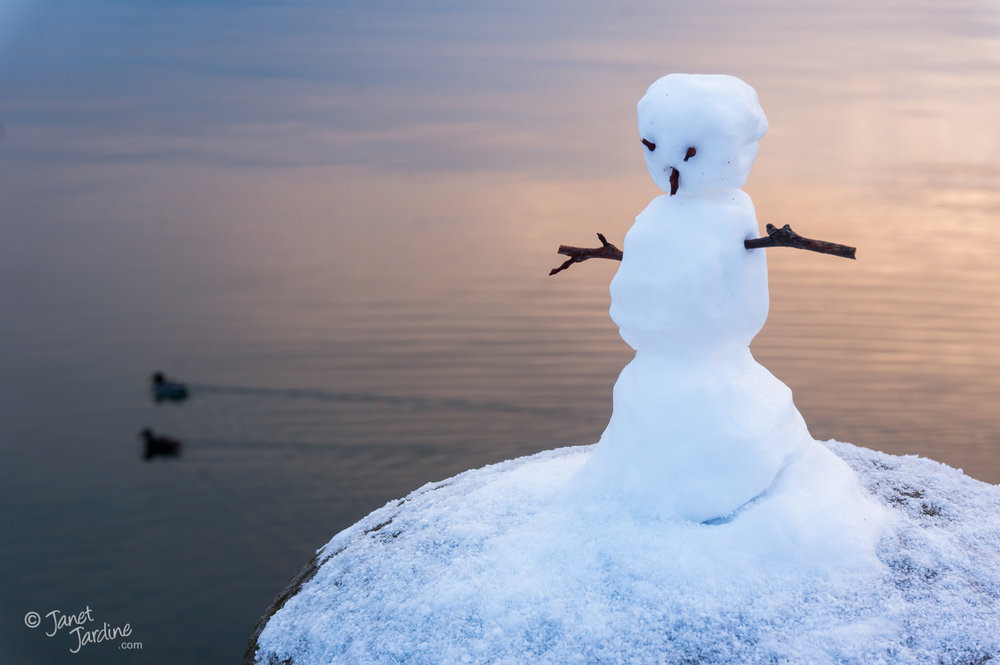 Lakefront-Snowman_Photo_copyright_Janet_Jardine_SquareSpace.jpg