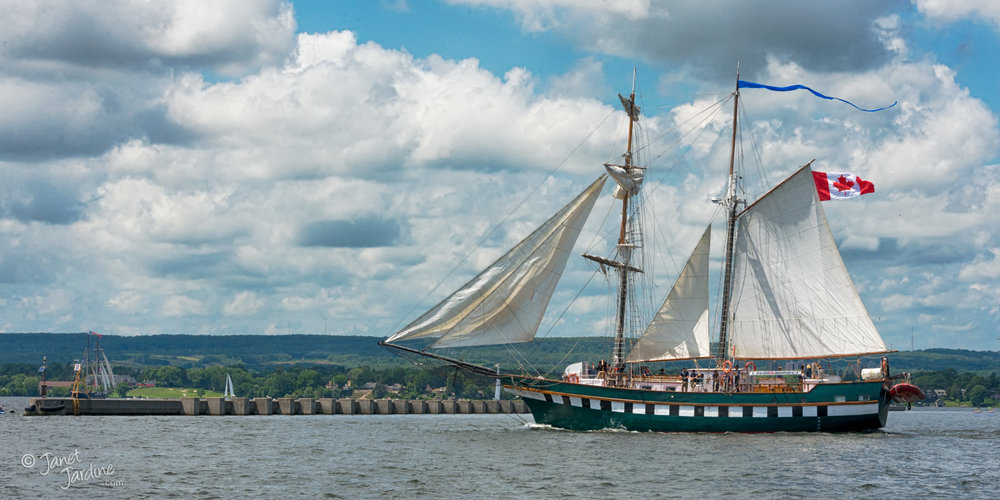 Tall-Ship-Canada-150-Burlington-Bay_Photo_copyright_Janet_Jardine_SquareSpace.jpg
