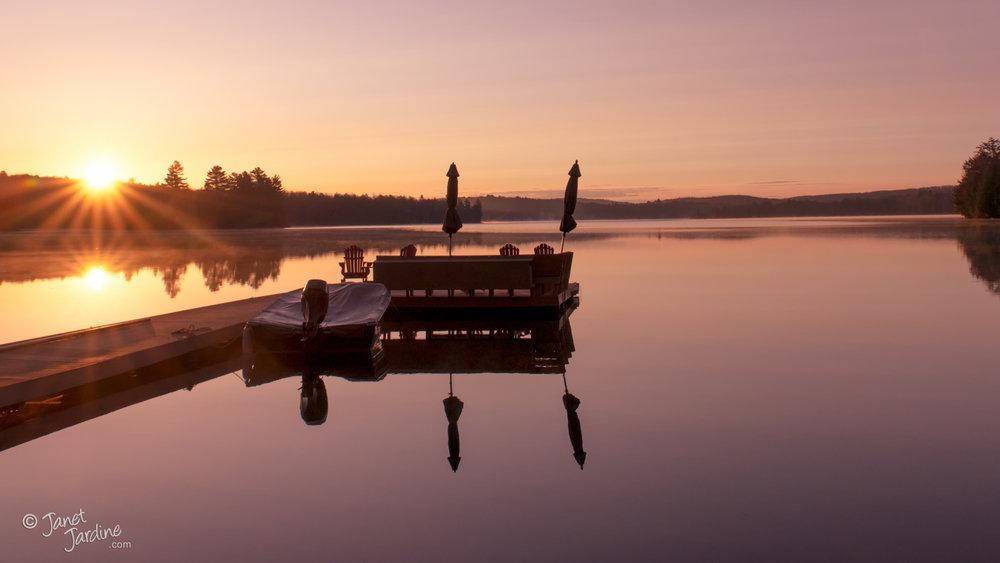 Morning-Delights_Photo_copyright_Janet_Jardine_SquareSpace.jpg