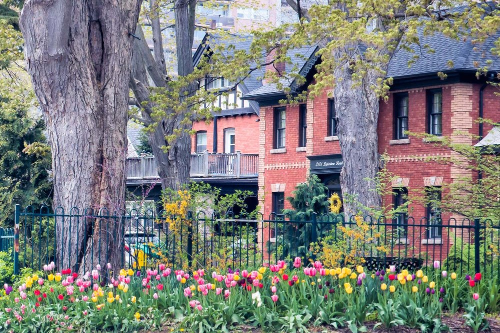 Spring-Curb-Appeal_Photo_copyright_Janet_Jardine_SquareSpace.jpg