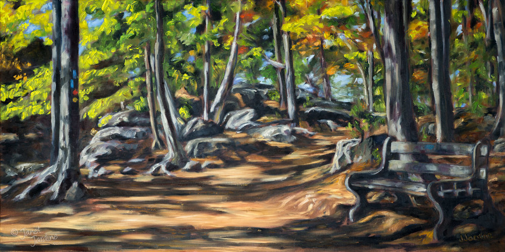 Turning Point. On the trails at Rattlesnake Point Conservation Area. A turning point - on the trail, in the seasons, and in life. 18x36 inches, oil on canvas © 2017 Janet Jardine