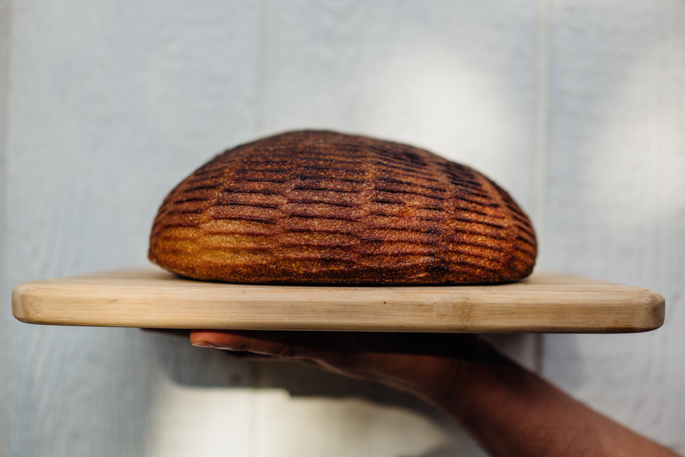 joset-baker4.jpg
