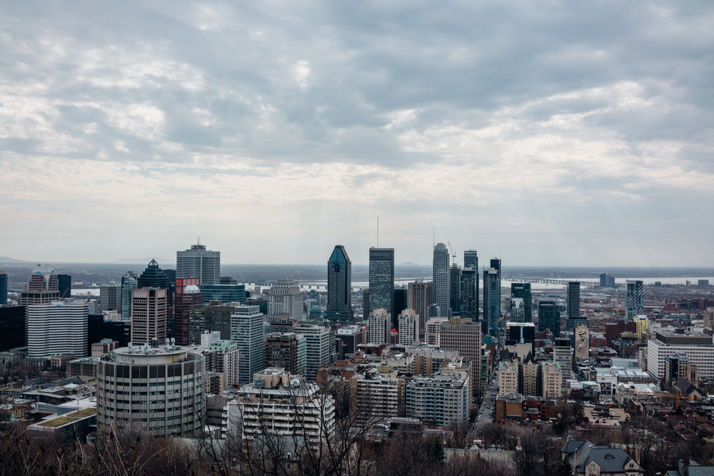 Downtown Montréal from  Parc du Mont-Royal . I spent a couple of my mornings here, running up here one of the times, in nature.
