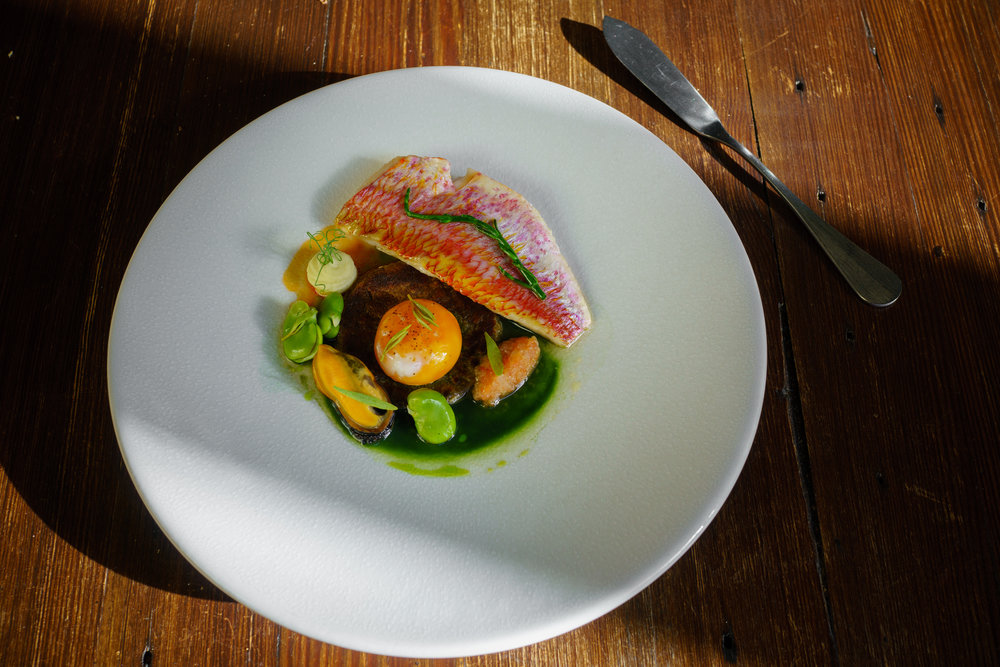 Grilled Red Mullet, Bread Crumbs, Artichoke purée, Broad Beans, Tomatoes, Slow-cooked Egg