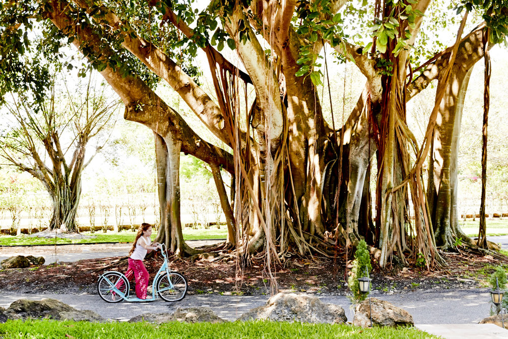 banyan-tree-girl-riding-bicycle-lifestyle-photography.jpg