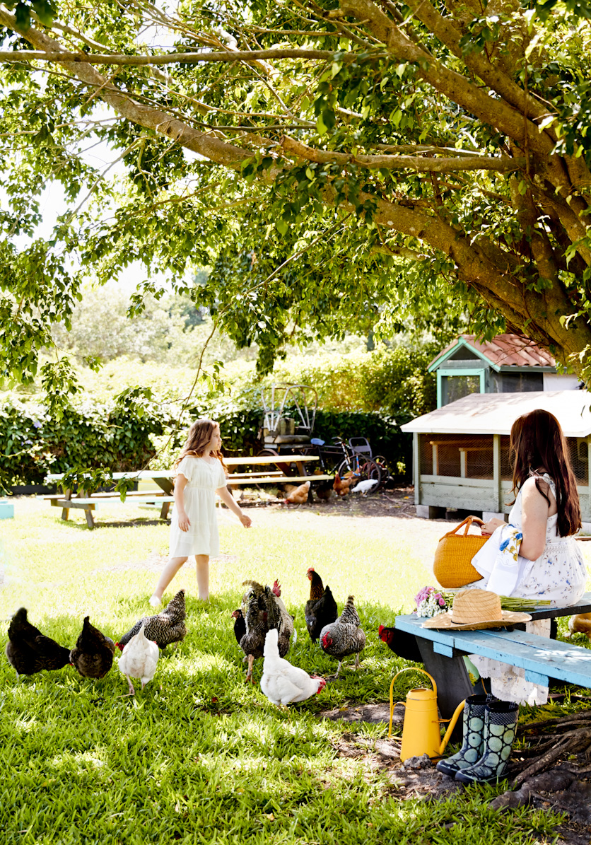 picnic-chicken-coop-lifestyle-photography.jpg