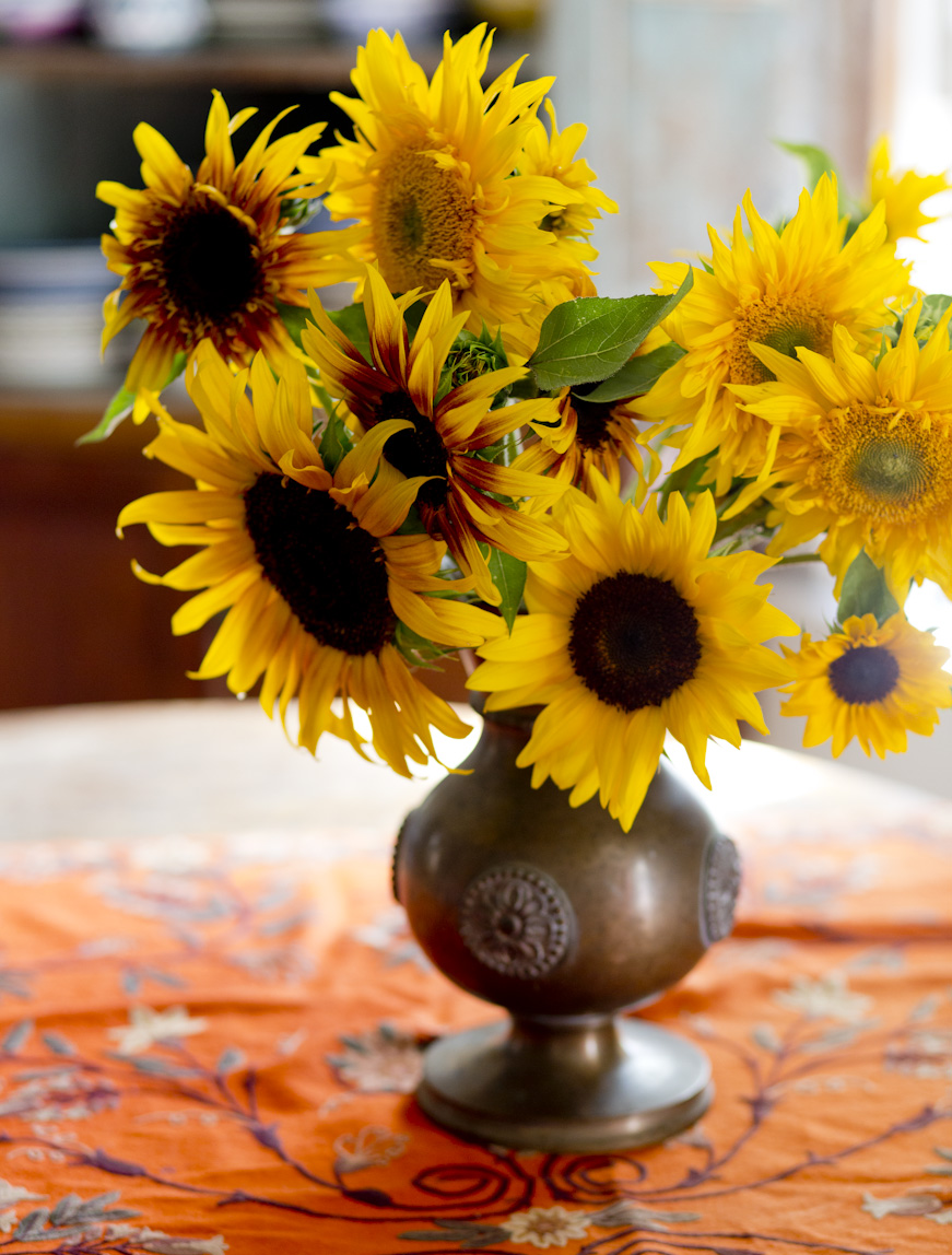 summer-sunflowers-lifestyle-photography.jpg