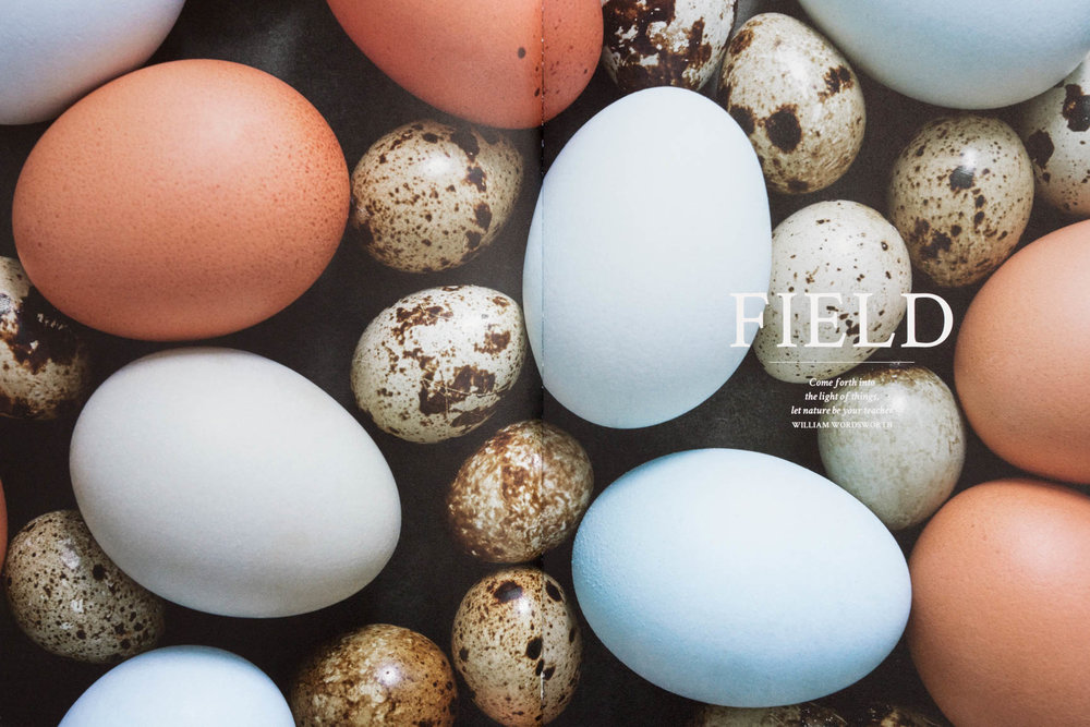 food-photography-cookbook-local-food-eggs.jpg