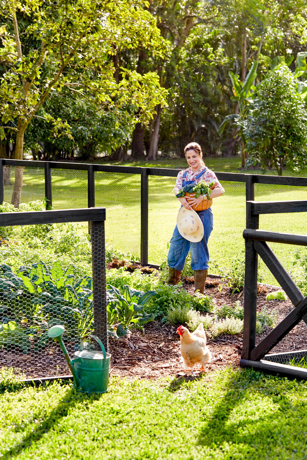 country-garden-harvesting.jpg