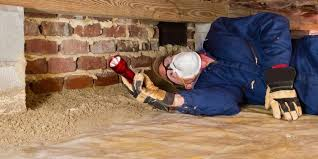 Jason Bigham   Termite Inspection 678-357-6613  Free Termite inspection for Element Funding borrowers   www.gobigham.com