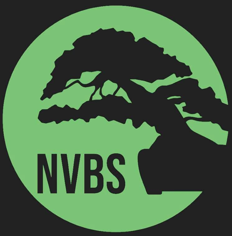 NVBS.jpg