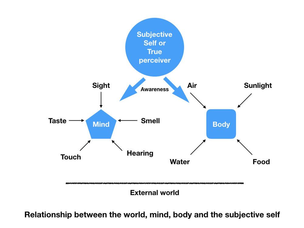 Subjective self.001.jpeg