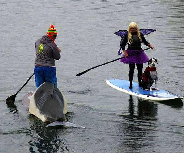 Hull-o-Ween Paddle & Potluck - Our season finale has been going on since the 1990 and brings together some of the most original paddling costumes anywhere! Dress up your boat or board, bring a dish to share and maybe you'll win a prize for your efforts!For more Hull-o-Ween photos click here.