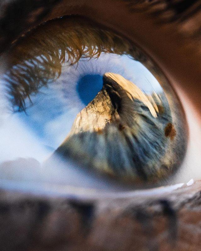 """while visions of porta-ledges danced in her head"" 🎶🧗🏽♀️👁 El Capitan seen through @aimeesilver's eye"
