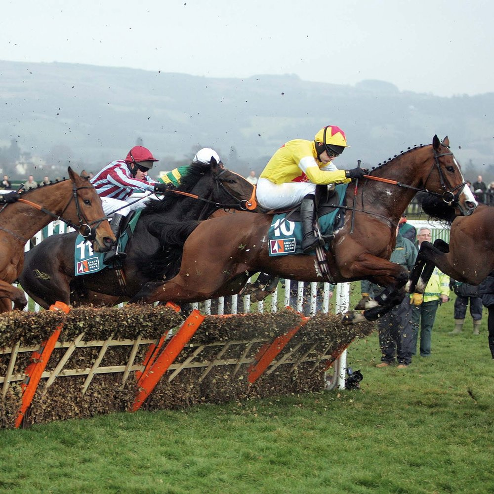 Cheltenham Festival - Cheltenham Festival is one of Horse Riding's most enthralling extravaganzas and the pinnacle of the jump season. The world's best horses, jockeys and trainers will come together for four days of the finest racing with huge prize money on offer across the 28 races. Group 1 races including the Champion Hurdle, Queen Mother Champion Chase, Ladbrokes World Hurdle and the Gold Cup are just some of the highlights the week has to offer.12th - 15th March • 2019Cheltenham, UK • Packages from £495More Information > >