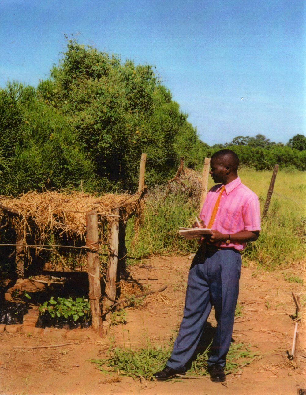 Community Tree Nursery - Maronga - Zimbabwe.jpg