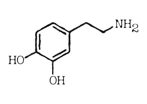 dopamine-3304357_1920.jpg