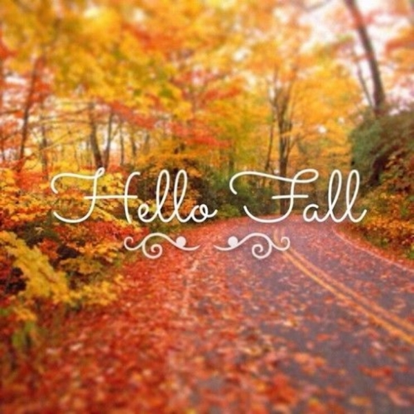 20-Happy-Fall-Quotes-5564-18.jpg