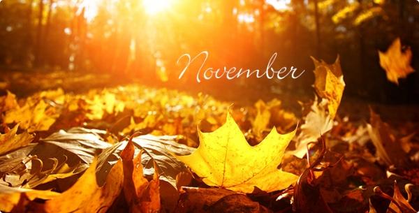 November16.jpg