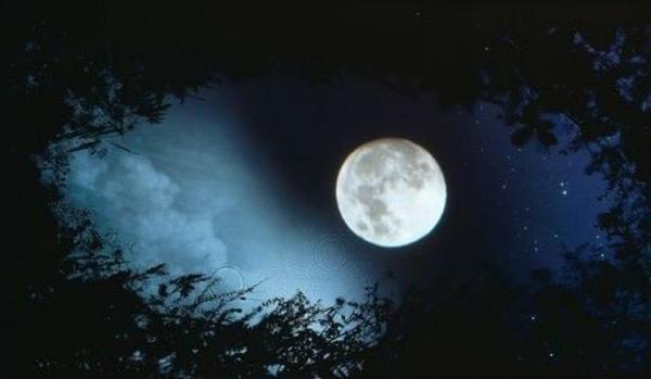 full-moon-in-sag.jpg