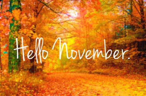 44809-Hello-November.jpg