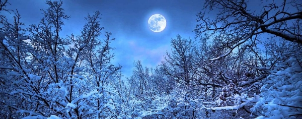 31978-00-rfr_full_moon_in_the_winter_1600px_1024x1024.jpg