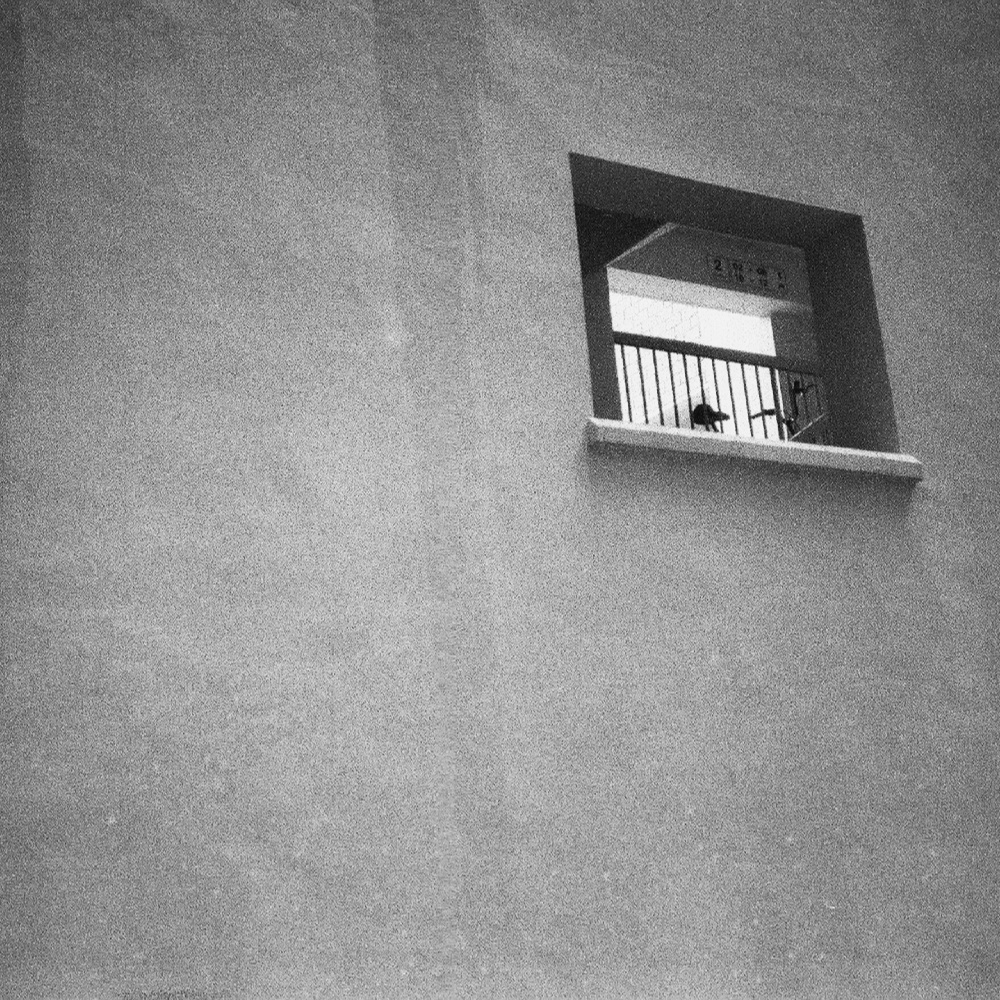 # 28  - stroll 15  / ilford hp5+ /