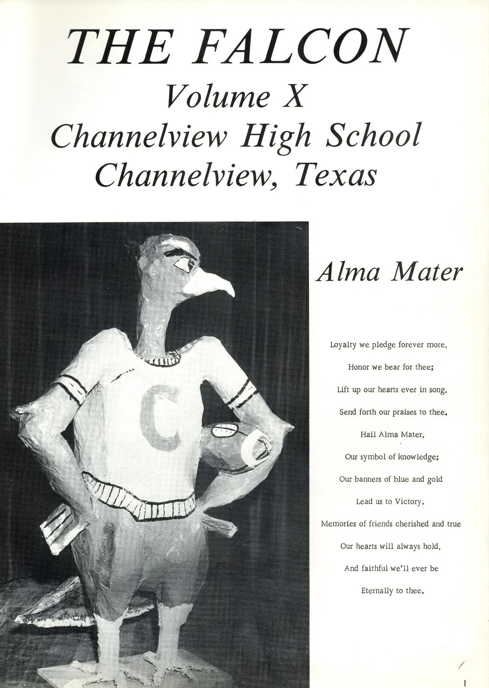 Bob McNeil - 1967 - Age 18 - Twelfth Grade - Channelview High School - School Mascot - Freddy Falcon