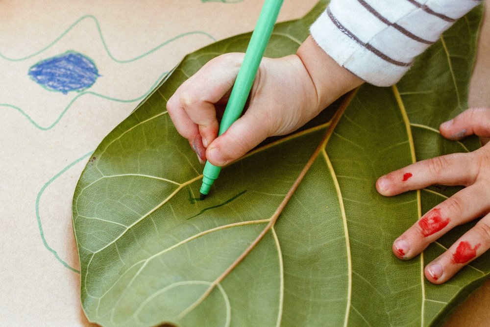 aec-inspiration-leafcolouring.jpg