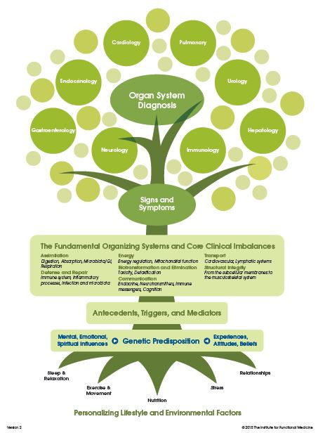 Functional-Medicine-Tree-Lowry-and-Glendale.jpg