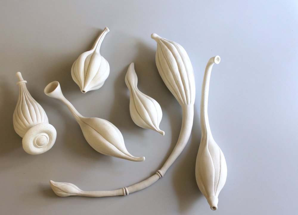 Sarah Rayner.  Gynoecium . 2016. Hand carved porcelain with Terra sigillata.Photograph by Shannon Garson.