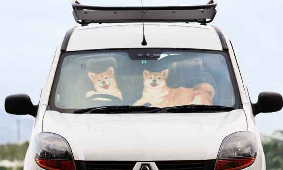 Source:  https://sociorocketnewsen.files.wordpress.com/2016/05/shiba-car-top.png